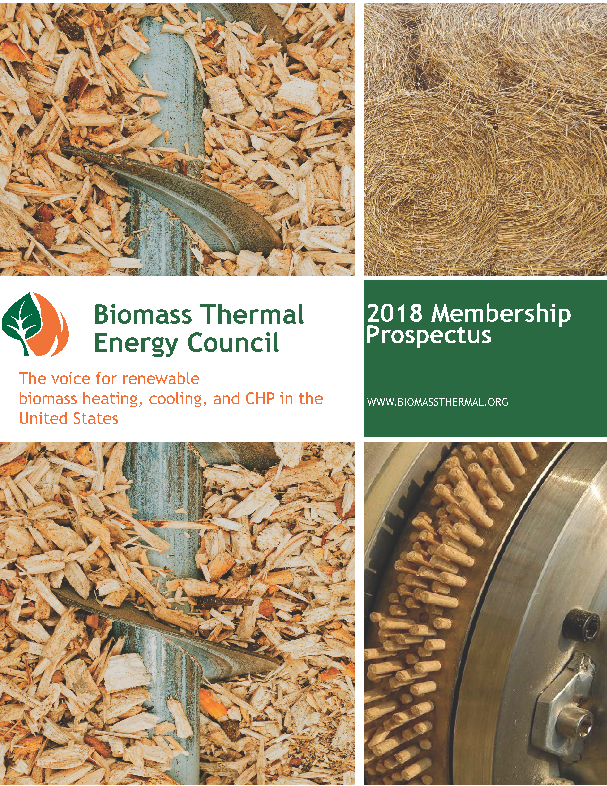 Member Directory Biomass Thermal Energy Council Btec How Electricity Generation From Works